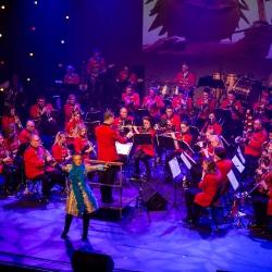 Vastelaovesconcert Koninklijke Harmonie Euterpe 2020_29