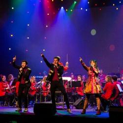 Vastelaovesconcert Koninklijke Harmonie Euterpe 2020_4